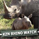 ecast-coast-radio-save-da-rhino's